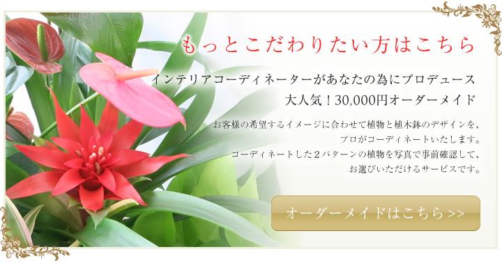 インテリアコーディネーターがあなたの為にプロデュース大人気!30,000円オーダーメイド