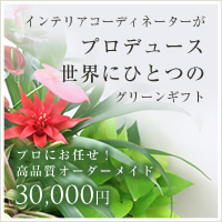 高品質オーダーメイド 30,000円コース